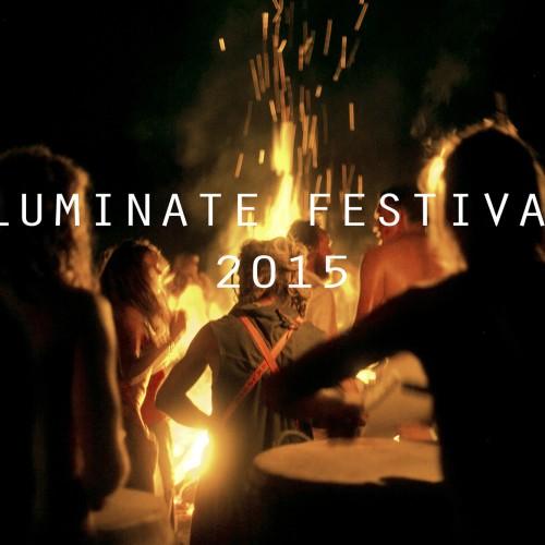 Luminate 2015